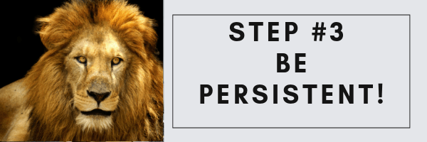 be persistent Build A Website Online
